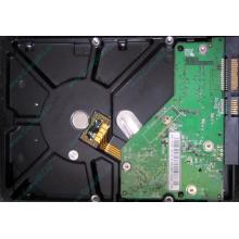 Б/У жёсткий диск 500Gb Western Digital WD5000AVVS (WD AV-GP 500 GB) 5400 rpm SATA (Евпатория)